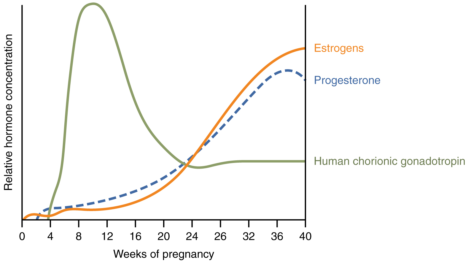hight resolution of a graph hormone concentration versus week of pregnancy shows how three hormones vary throughout pregnancy figure 3