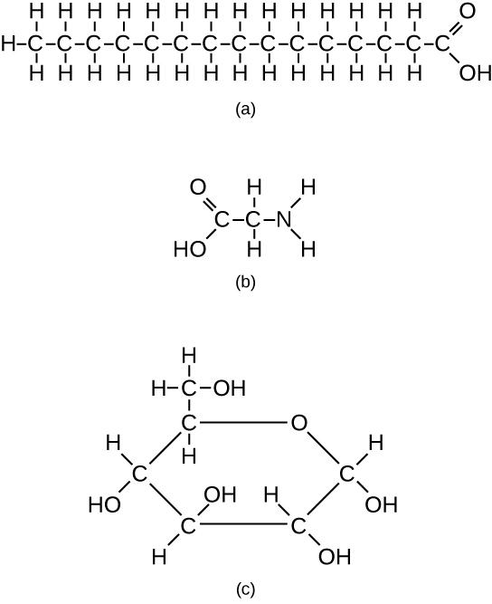 2.3 Biological Molecules