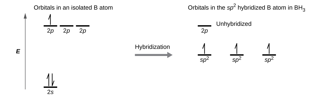 molecular orbital diagram of oh wiring for switch and plug 8 2 hybrid atomic orbitals chemistry a is shown in two parts connected by right facing arrow labeled