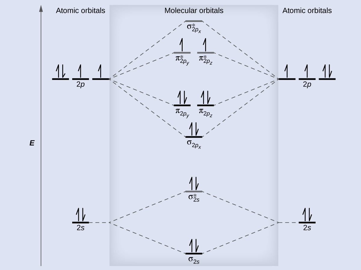 8 4 Molecular Orbital Theory Chemistry