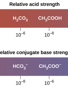 The diagram shows two horizontal bars first labeled  crelative acid strength also relative strengths of acids and bases  chemistry rh opentextbc