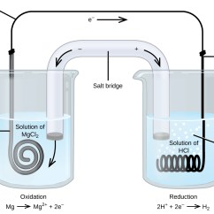 Labelled Diagram Of Ph Meter 2000 Gmc Sierra Stereo Wiring 17 2 Galvanic Cells Chemistry This Figure Contains A An Electrochemical Cell Two Beakers Are Shown Each