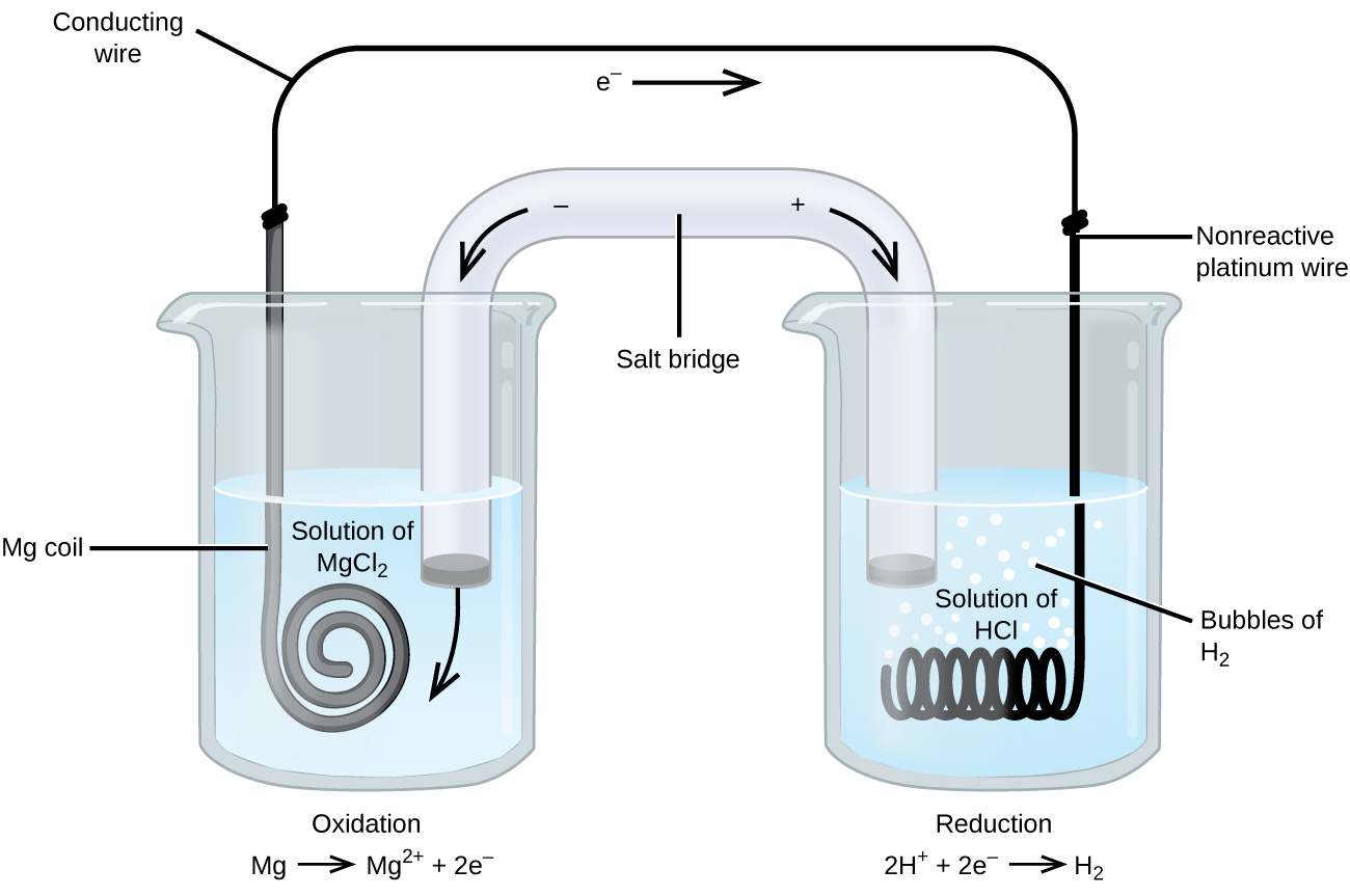hight resolution of this figure contains a diagram of an electrochemical cell two beakers are shown each