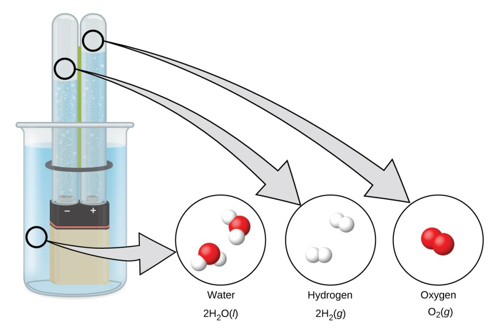 medium resolution of a diagram shows a beaker that contains a liquid a battery submerged in the liquid