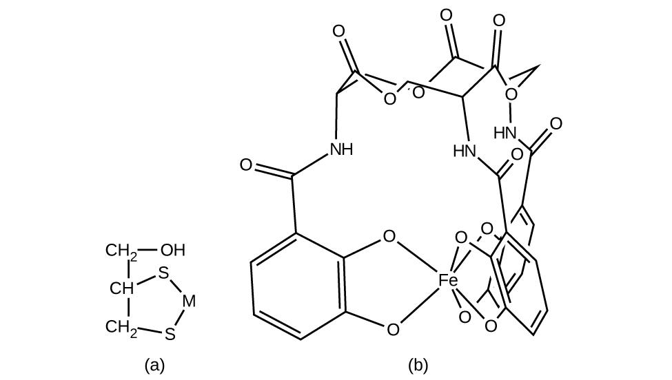 CNX_Chem_19_02_BalEnt