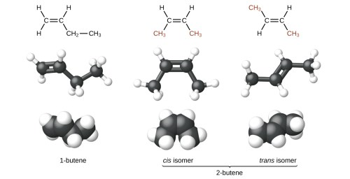 small resolution of the figure illustrates three ways to represent isomers of butene in the first row of