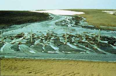 Soil erosion by rain and channelled runoff on a field in Alberta.