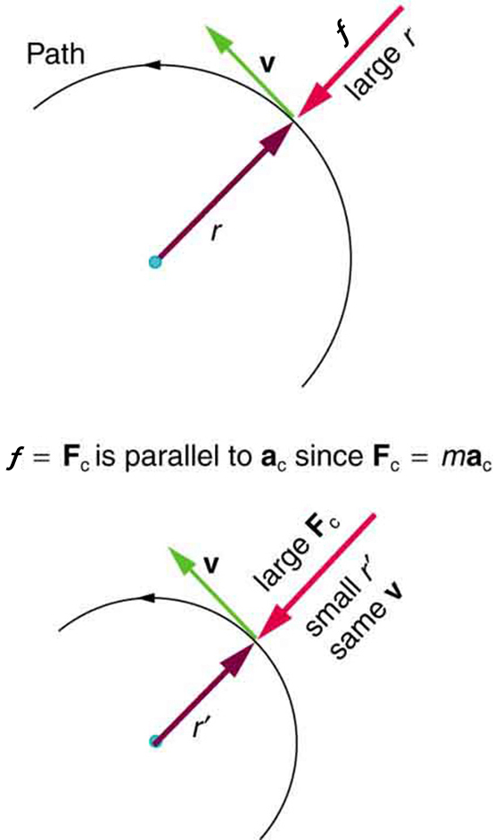 ferris wheel diagram of force