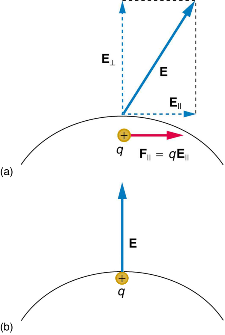 Conductors and Electric Fields in Static Equilibrium