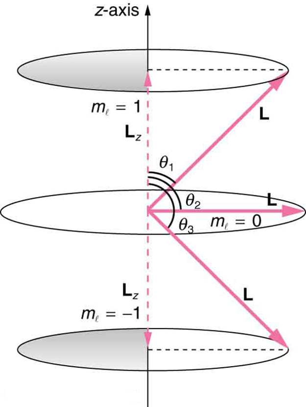 Quantum Numbers and Rules