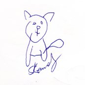 My cat, drawn without looking. Surprisingly good!