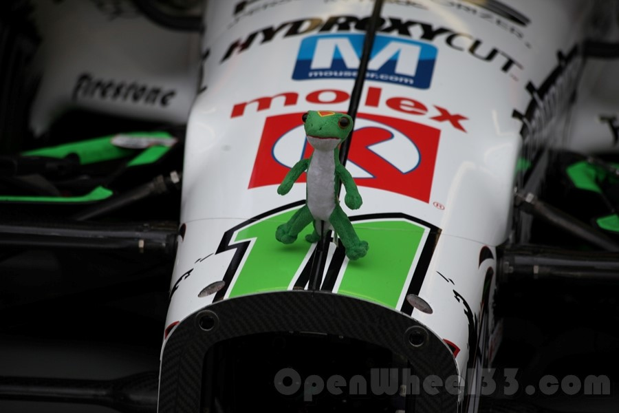 The Geico gecko hanging out on the No. 11