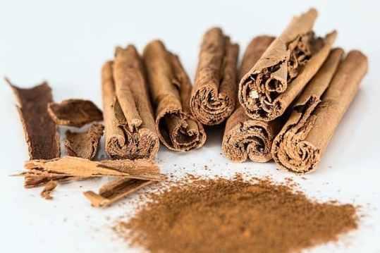 diabetes herb cassia cinnamon