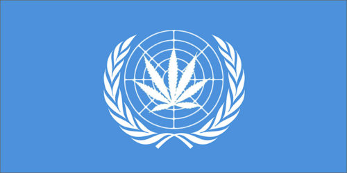UN Just Called For Worldwide Drug Decriminalization