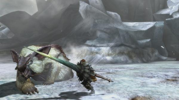 monster hunter 3 ultimate pic 3