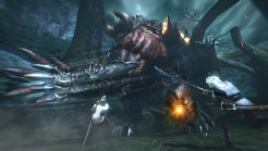Toukiden screenshot 22