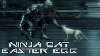 Metal Gear Rising Ninja Cats Easter Egg