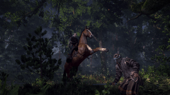 The Witcher 3: Wild Hunt | Horse ride