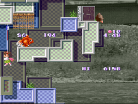 Umihara Kawase on SFC