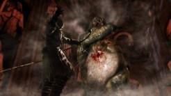 Dark Souls 2 pic 7