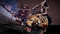 Riding tiger