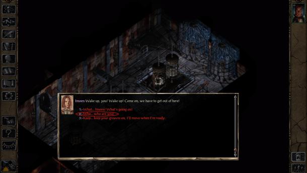 Baldur's Gate II Enhanced Edition | Amnesia Option