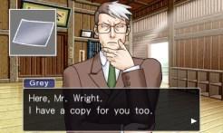 Phoenix Wright: Ace Attorney Trilogy | Turner Grey