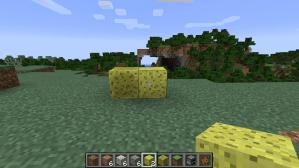 Minecraft 1.8 - Sponge Blocks