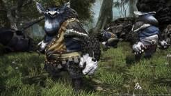 Final-Fantasy-XIV_2014_10-27-14_009