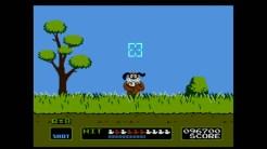 Duck Hunt 01