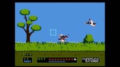 Duck Hunt 02