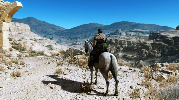 Metal Gear Solid V | D-Horse