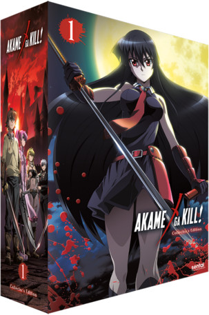 Akame ga Kill! - Chipboard Box