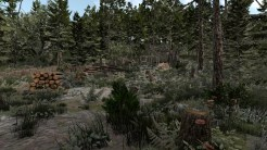 Lumbercamp 04