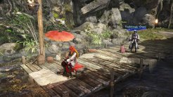 SAMURAIWARRIORSSpiritofSanada_Screenshot (5)