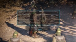 DYNASTYWARRIORS9_Screenshot06