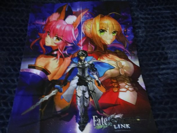Fate/Extella Link | Cloth Poster