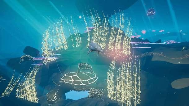 Jupiter | Underwater Life