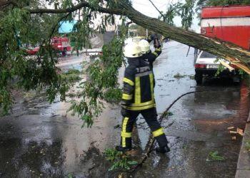 Ураган в Киеве: ветер валит деревья и блокирует дороги - новости Украины - Киев