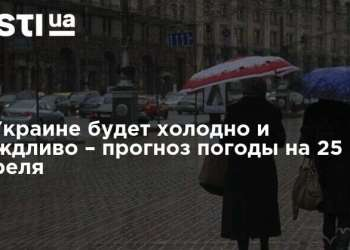 social 7937050 dozhd 800x418.jpg