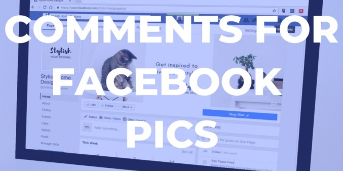 comments for facebook pic