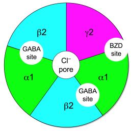 xanax for opiate withdrawal: gaba receptors