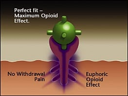 How To Use Imodium Ad For Opiate Withdrawal Opiate