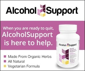 alcohol support reviews