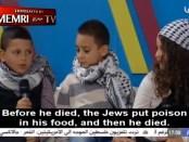 Palestijns kinderprogramma
