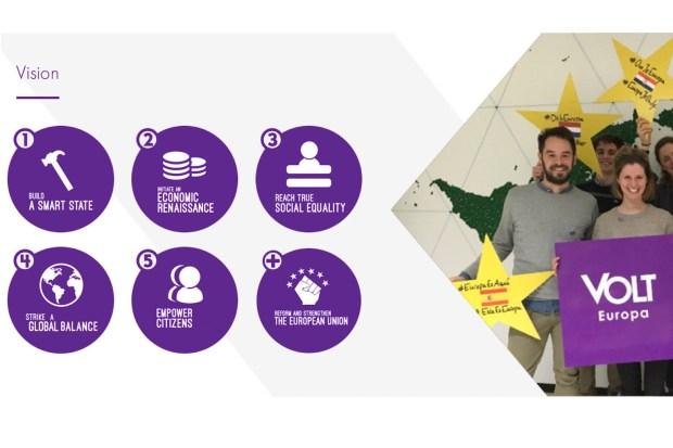 Screenshot www.volteuropa.org