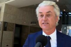 """Titelfoto bij artikel Katiana Kayvantash op OpinieZ.com """"Wilders is in de linkse val getrapt"""""""