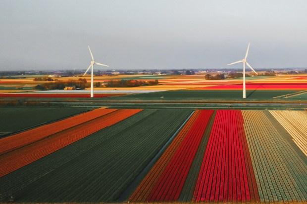 Titelfoto bij artikel Rutger van den Noort op OpinieZ.com