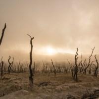 Klimaatgedram bij de NPO wordt steeds erger