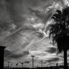 Nihilizm  Czarno-biała fotografia, która przedstawia zachmurzone niebo. Zlewej strony widać kawałek budynku, pośrodku wtle słupy wysokiego napięcia, natomiastz prawej drzewo.
